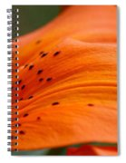 Soft Lily Spiral Notebook