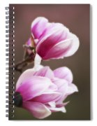 Soft Magnolia Blossoms Spiral Notebook