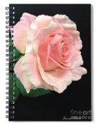Soft Pink Rose 1 Spiral Notebook