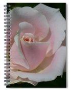 Soft Pink Rose Spiral Notebook