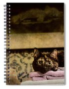 Soft Place To Fall Spiral Notebook