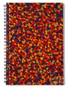 Soft Primary Spiral Notebook