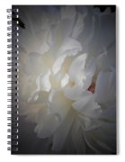 Soft White Peony Spiral Notebook