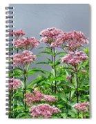 Softest Pink Spiral Notebook