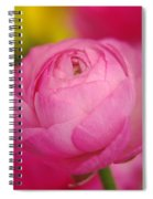 Softly Opening Spiral Notebook