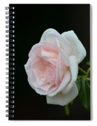 Softly Pink - Rose Spiral Notebook