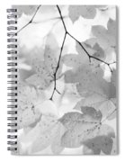 Softness Of Maple Leaves Monochrome Spiral Notebook
