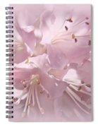 Softness Of Pink Pastel Azalea Flowers Spiral Notebook