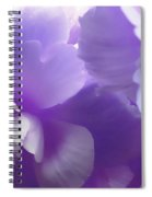 Softness Of Purple Begonias Spiral Notebook