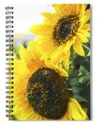 Solar Sunflowers Spiral Notebook