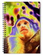 Solarized White-faced Monkey Spiral Notebook