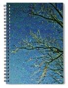 Solemn Sky Spiral Notebook