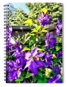 Solina Clematis On Fence Spiral Notebook