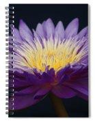 Solita Side...   # Spiral Notebook