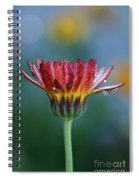 Solitary Moment Spiral Notebook