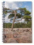 Solitary Tree Amidst Field Of Boulders Spiral Notebook