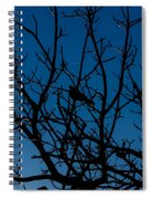 Solitude In The Midst Of Chaos Spiral Notebook