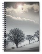 Solitude Of Coldness Spiral Notebook