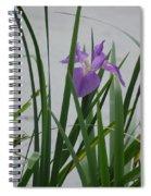 Solo Iris Spiral Notebook