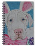 Some Bunny Says Spring Has Sprung Spiral Notebook