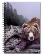 Some Days You Eat The Bear Some Days The Bear Eats You Spiral Notebook