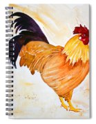 Some Days You Have To Paint A Rooster Spiral Notebook