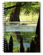 Some Turtles At Radium Springs Creek Spiral Notebook