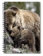 Someone To Watch Over Me Spiral Notebook