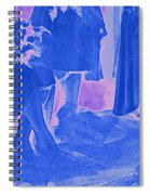 Something Old Something New Something Borrowed Something Blue By Jrr Spiral Notebook