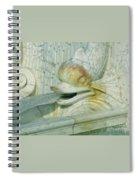 Somewhat Fishy Spiral Notebook