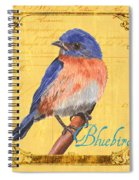 Colorful Songbirds 1 Spiral Notebook