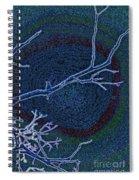 Songbird Blue Spiral Notebook