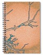 Songbird Peach Spiral Notebook