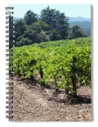 Sonoma Vineyards In The Sonoma California Wine Country 5d24512 Spiral Notebook
