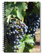 Sonoma Vineyards In The Sonoma California Wine Country 5d24630 Vertical Spiral Notebook
