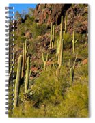 Sonoran Desert West Saguaro National Park Spiral Notebook