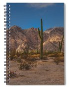 Sonoran  Spiral Notebook
