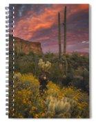 Sonoran Romance Spiral Notebook