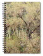 Soothing Desert Spiral Notebook