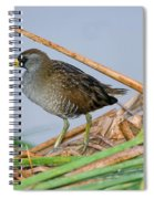 Sora Rail Spiral Notebook