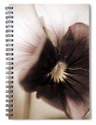 Sorbet Viola Spiral Notebook