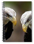 Soul Mates Spiral Notebook