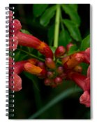 Sound The Trumpets Spiral Notebook