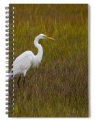 Soundside Park Topsail Island Egret Spiral Notebook