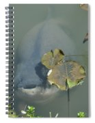 #south American Pacu Spiral Notebook