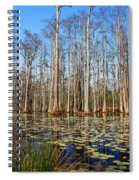 South Carolina Swamps Spiral Notebook