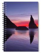 South Coast Reds Spiral Notebook