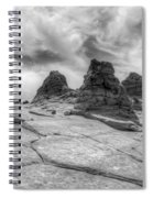 South Coyote Buttes Monochrome 1 Spiral Notebook