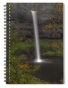 South Falls 1  Spiral Notebook