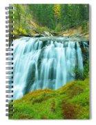 South Fork Falls  Spiral Notebook
